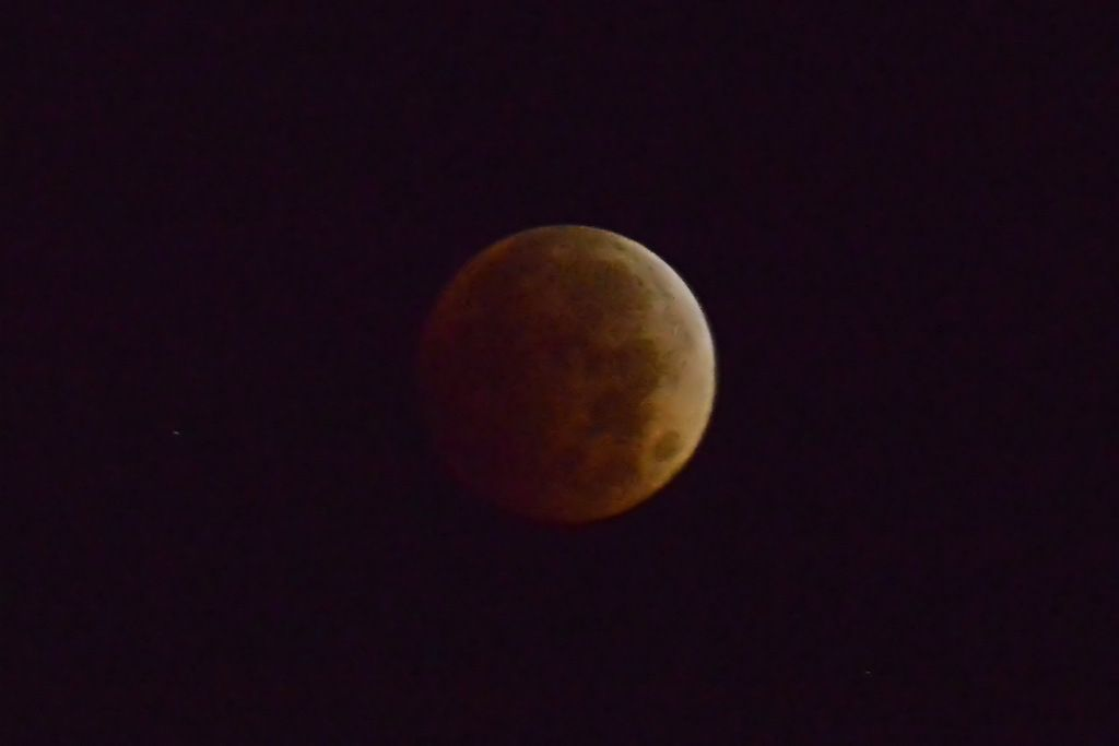 blood moon viewing winnipeg - photo #7