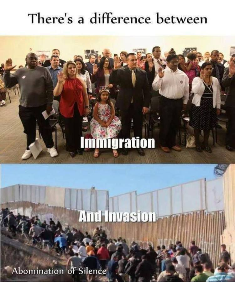 Image result for Immigration Vs invasion