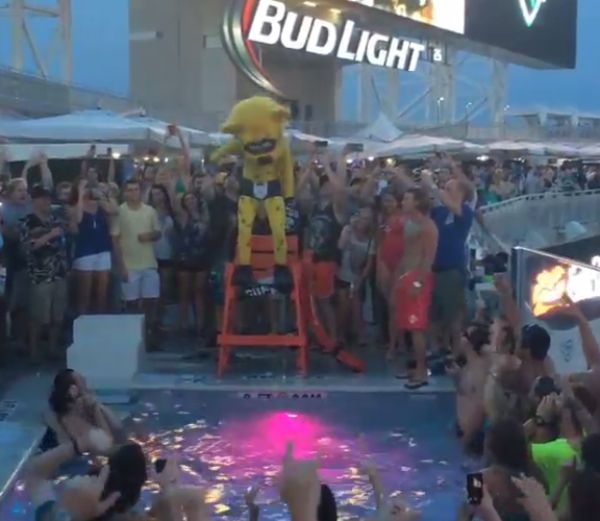 Jaguars mascot belly flops into cabana pool video - Jacksonville jaguars swimming pool ...