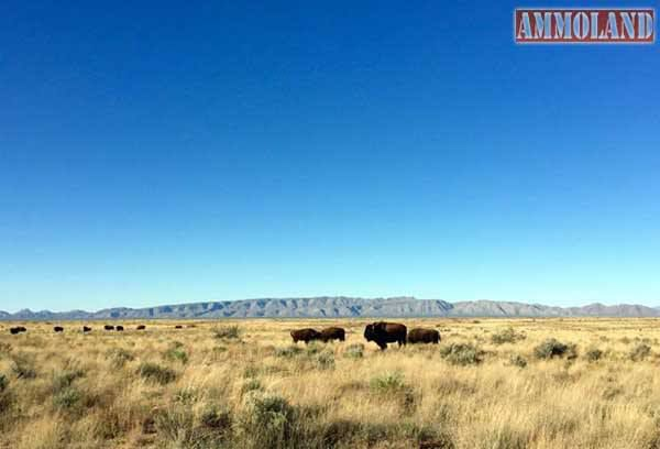 New Mexico Department Seeks Next Generation of ...