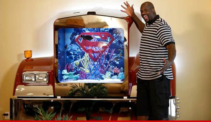 Photo of Shaquille O'Neal & his  Fish
