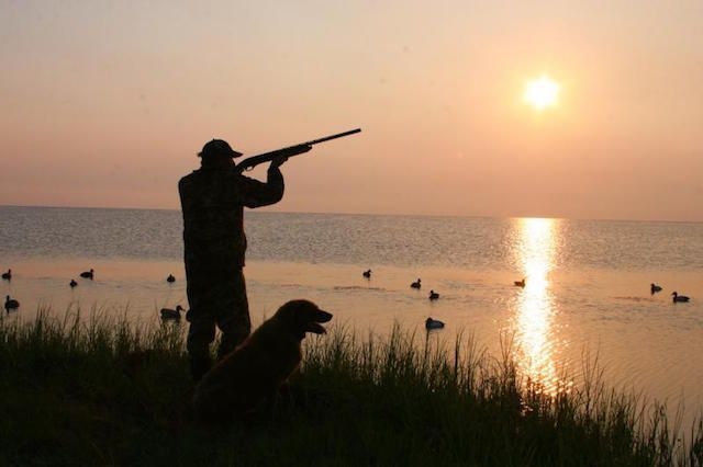 Breaking if you bought a fishing or hunting license your for Washington state fishing license online