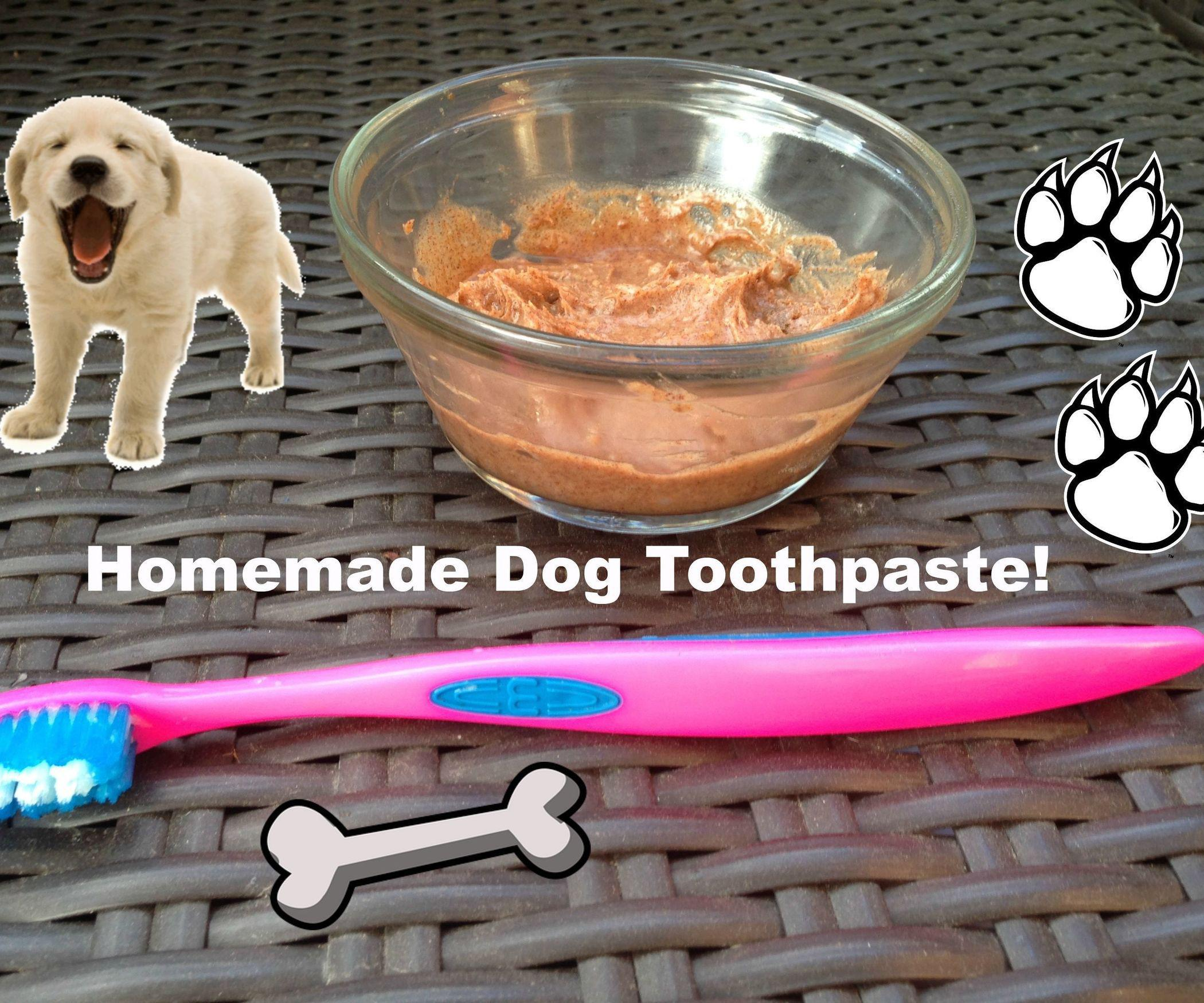 Homemade Toothpaste For Dogs