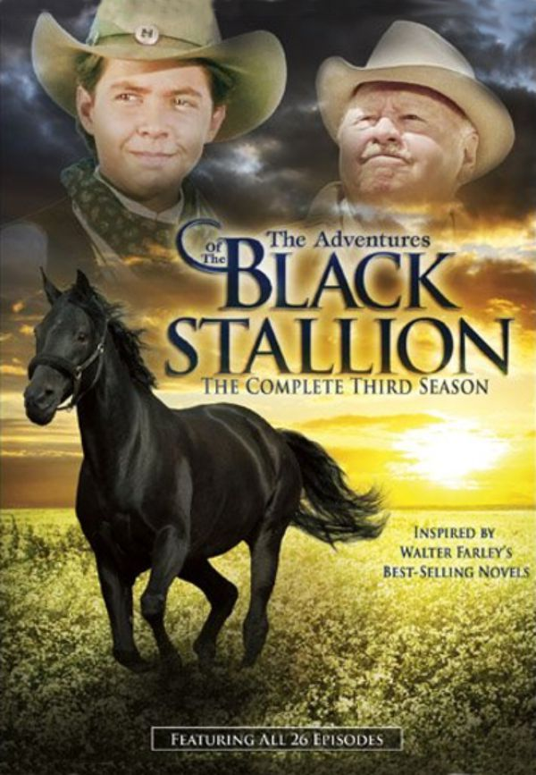 While traveling with his father young Alec becomes fascinated by a mysterious Arabian stallion who is brought on board and stabled in the ship he is sailing on
