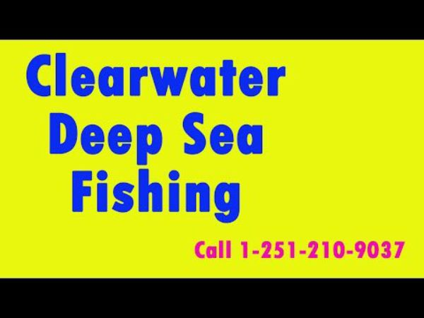 Clearwater deep sea fishing for Deep sea fishing clearwater