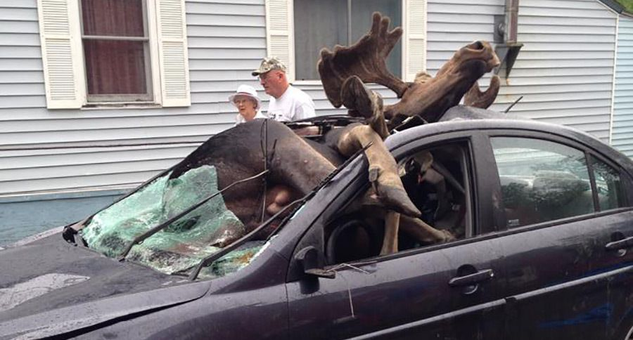 Car Accidents In New Hampshire