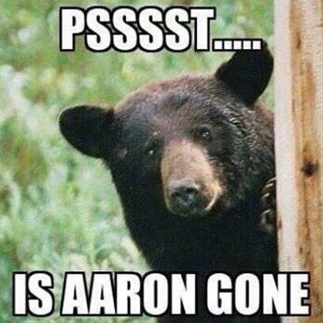 Like Bears Bears be Like