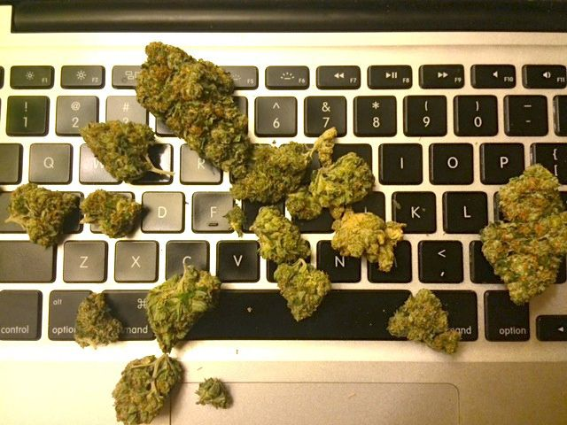 work from home united states weediquette working at home is great vice united states 1550