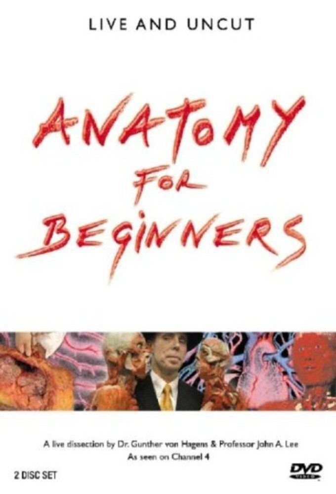 Watch Anatomy For Beginners