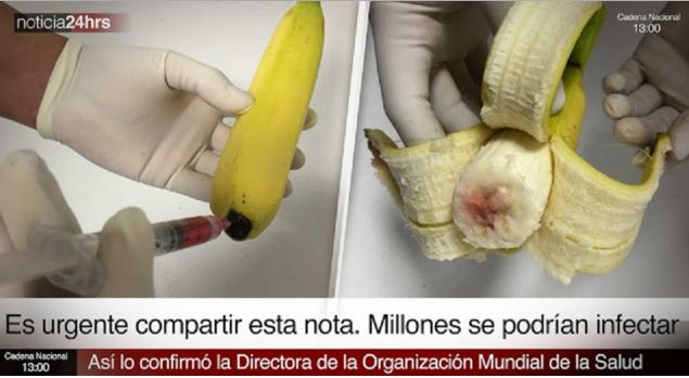 Allarme. Sono stati individuati banane affetti da aids in tutto il Messico!