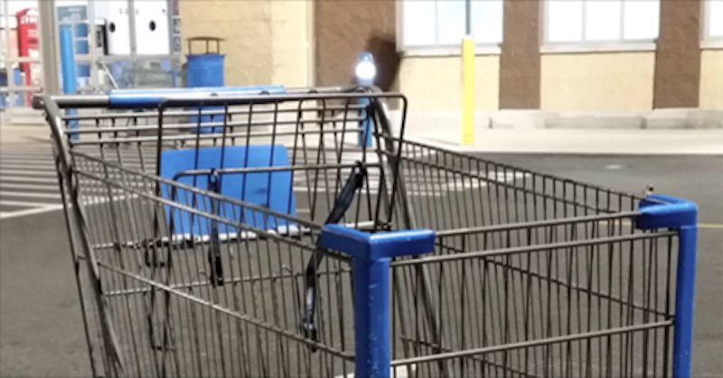 shopping cart her