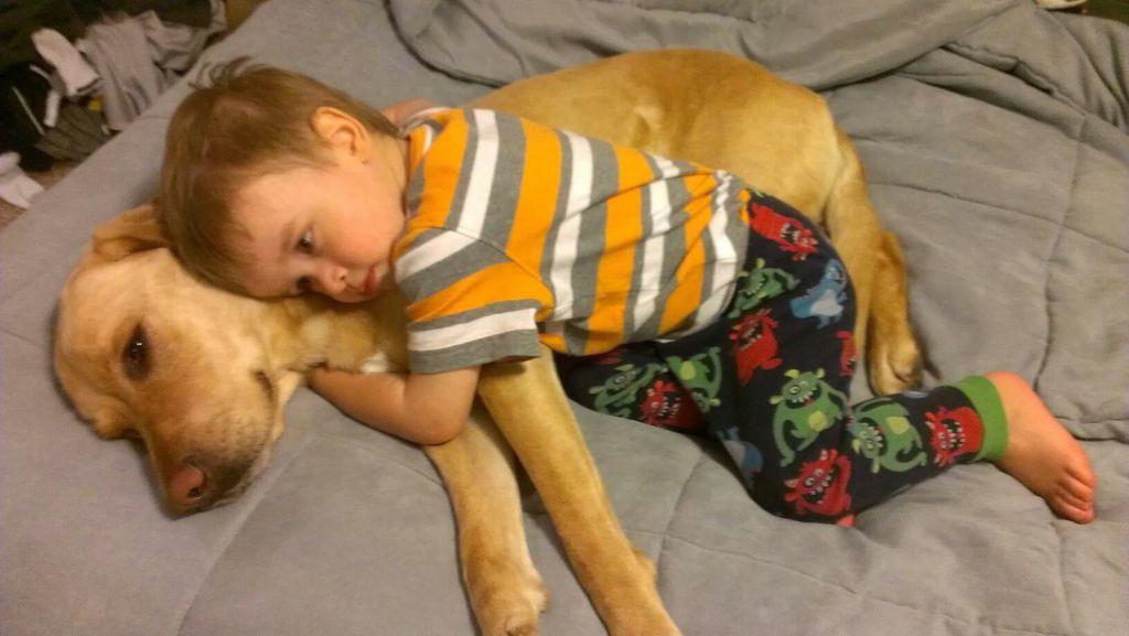 Cosas que pasan cuando tu mejor amigo es un perro