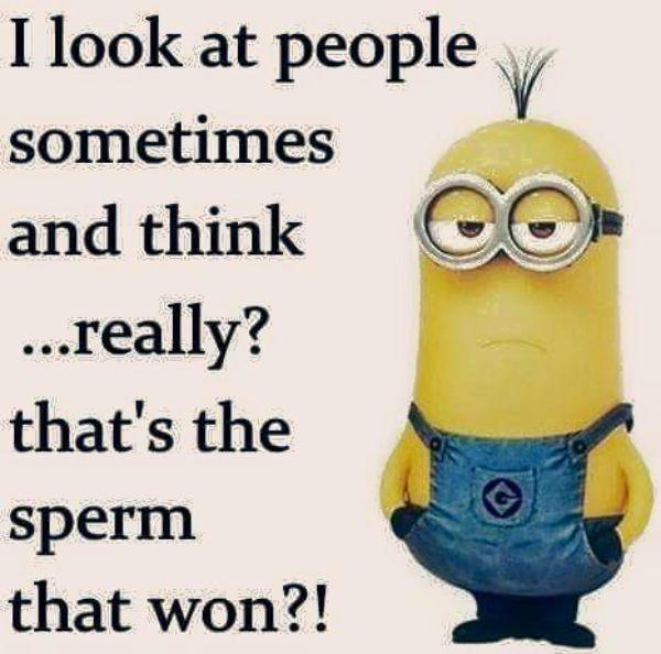 Jeg ser på folk nogle gange - Funny Minion citater Funny-5558