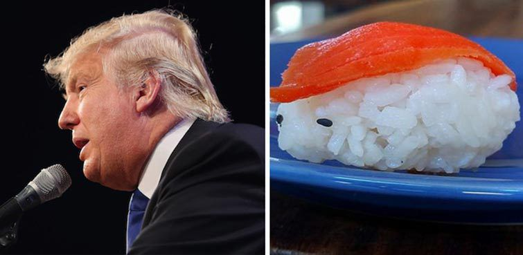 15 Things That Look Like Donald Trump S Stupid Face
