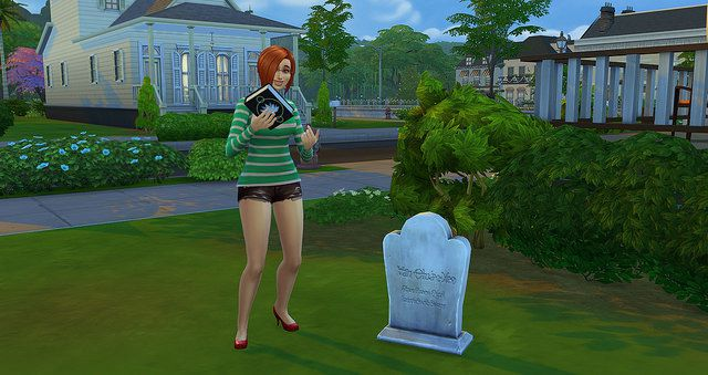 Sims  Spa Day What Does It Come With