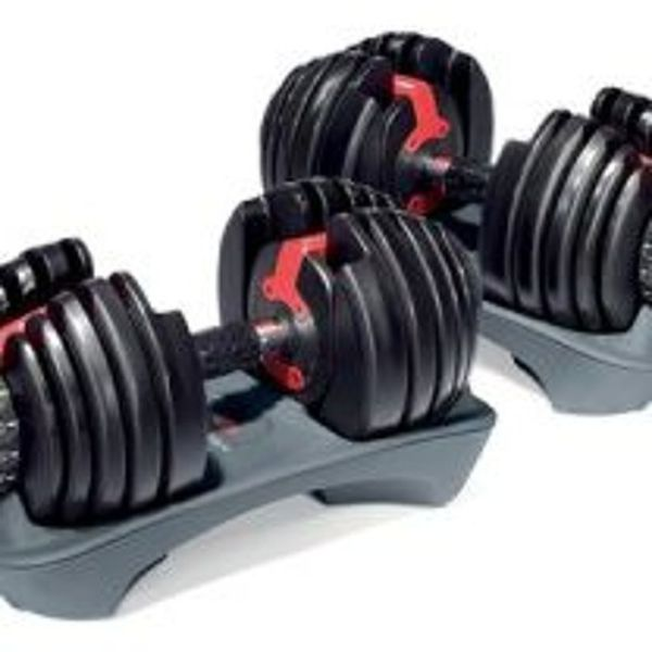 Free Weights Vs Barbell: Cheap Dumbbells By Dumbbells For Home Gym