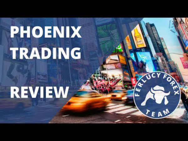 The Phoenix Finder Tool Package - Danielle Shay | Simpler Trading