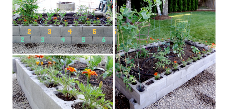 Top 26 low budget easy diy ideas to make your backyard for Diy backyards on a budget
