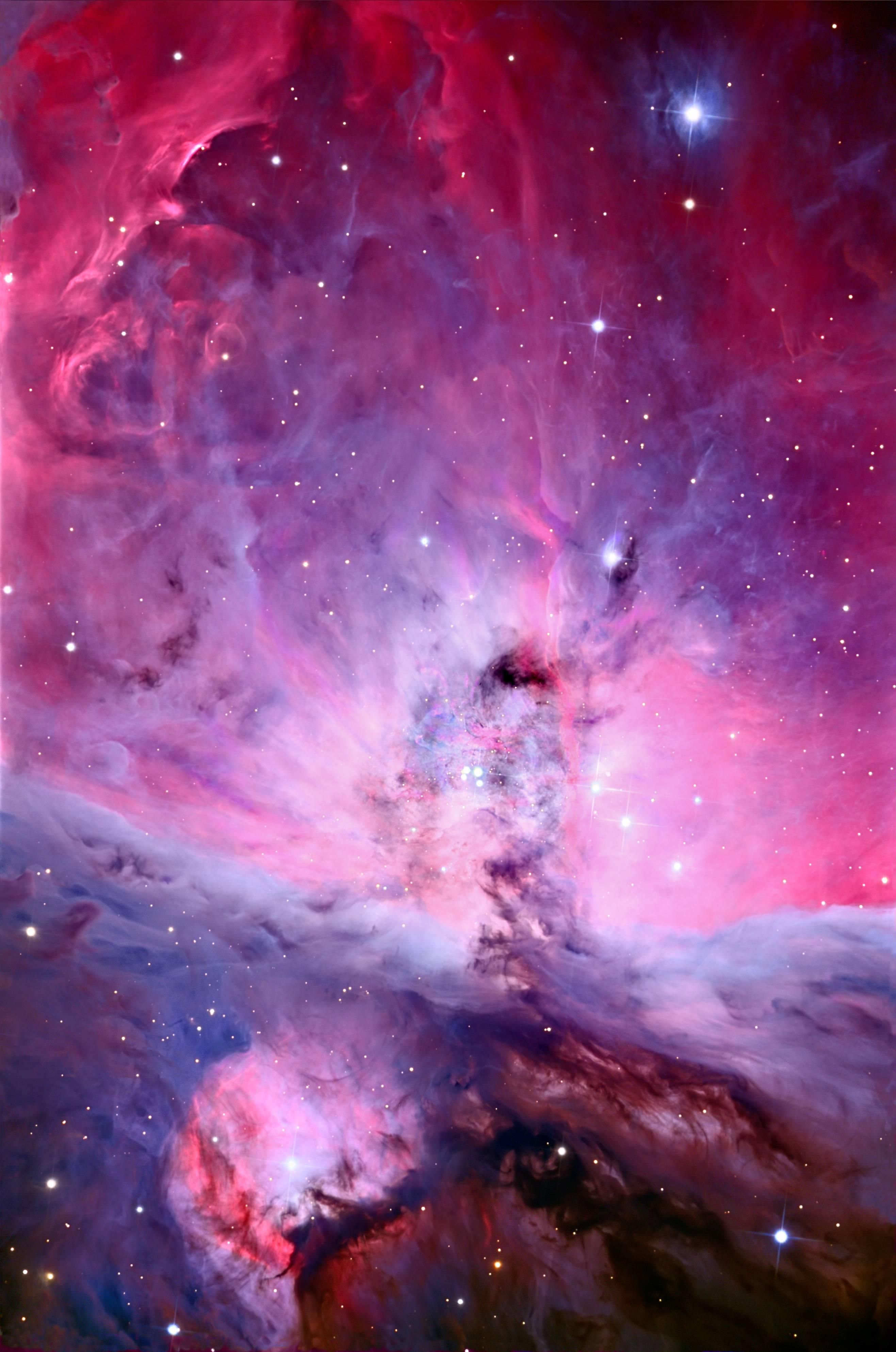 orion nebula pictures - HD 849×1280