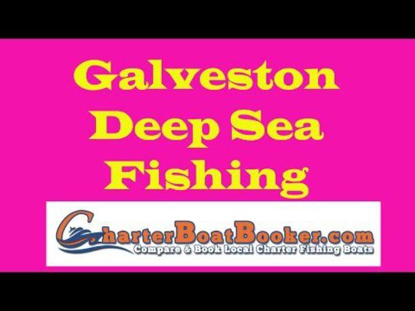 Galveston deep sea fishing charter boat booker for Galveston deep sea fishing charters
