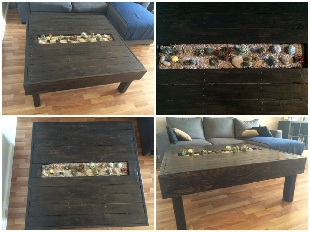 Table basse avec jardin de cactus pallet coffee table for Table jardin palette
