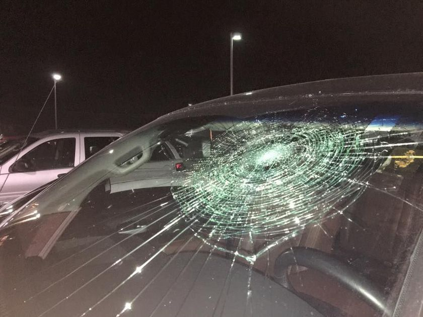 Thomas Toyota Joliet >> Gateway Grizzlies player hits grand slam - into his own windshield