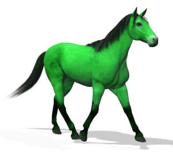 Картинки лошади в анимации, днем