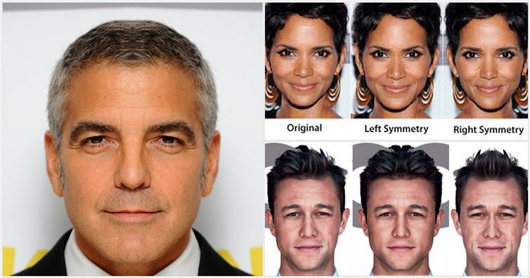 Celebrity Facial Composites : Most Beautiful Woman
