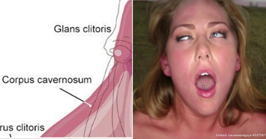 interesting things know about clitoris