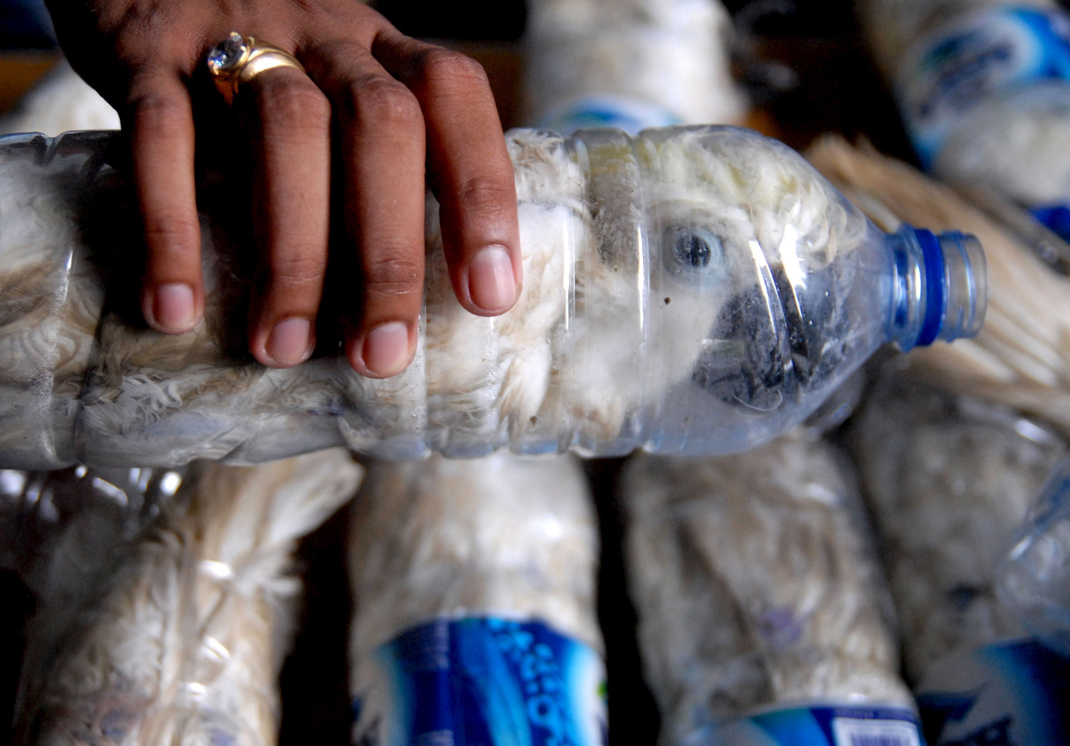 Фото бутылки в пезде 16 фотография