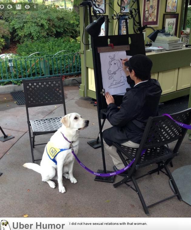 Uber Service Dog