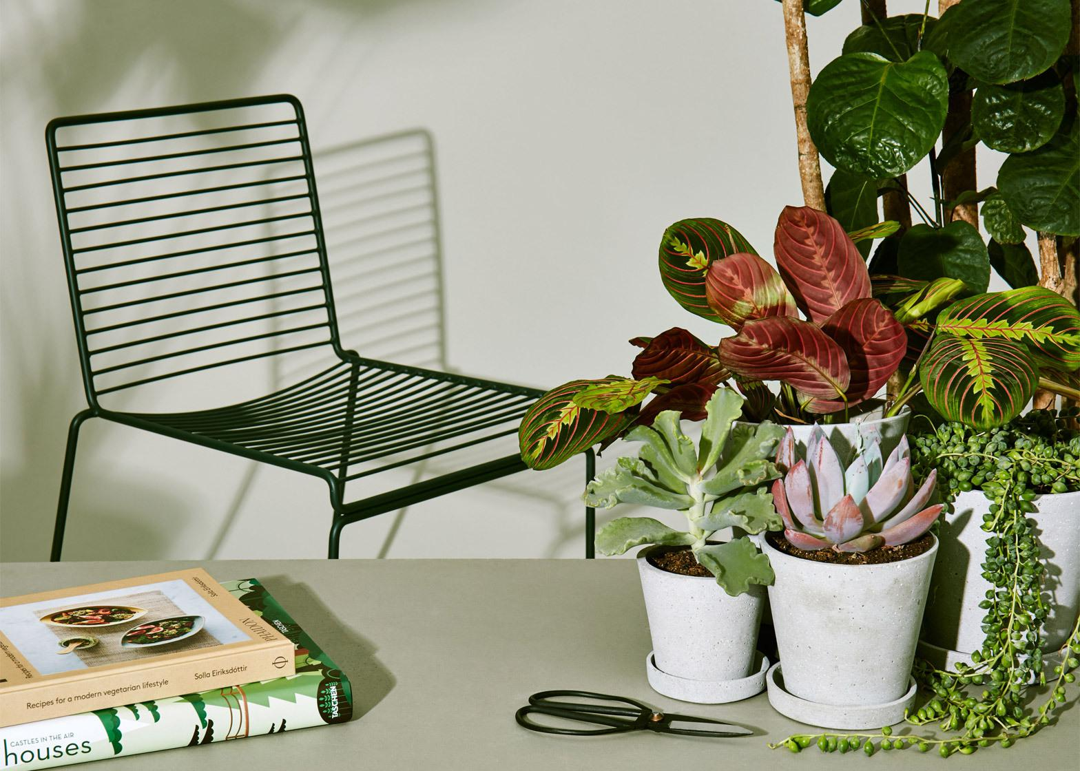 COS and Hay update collection for spring with garden furniture