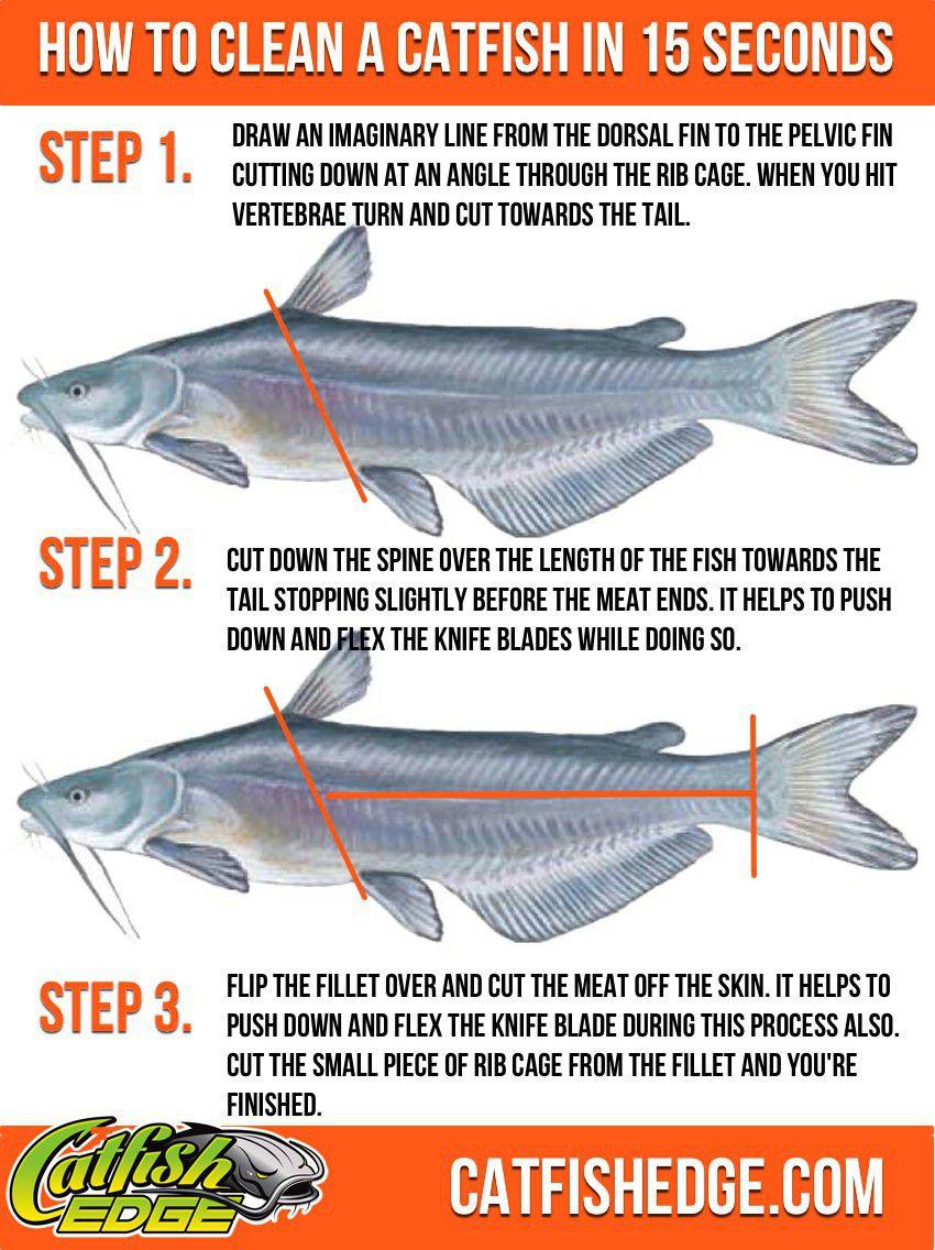 How To Build A Catfish Bait Chum Dispenser Quot Survival Life