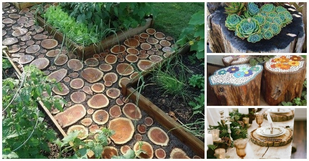 20 incredible ways to use tree stumps and branches for Tree trunk slice ideas